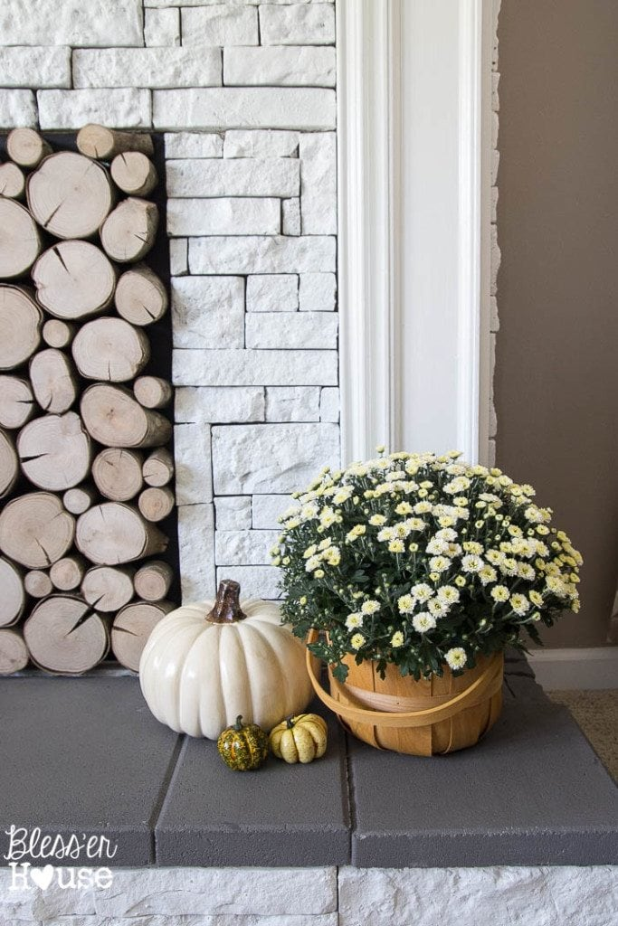 Fall 2015 Home Tour (5 of 7)