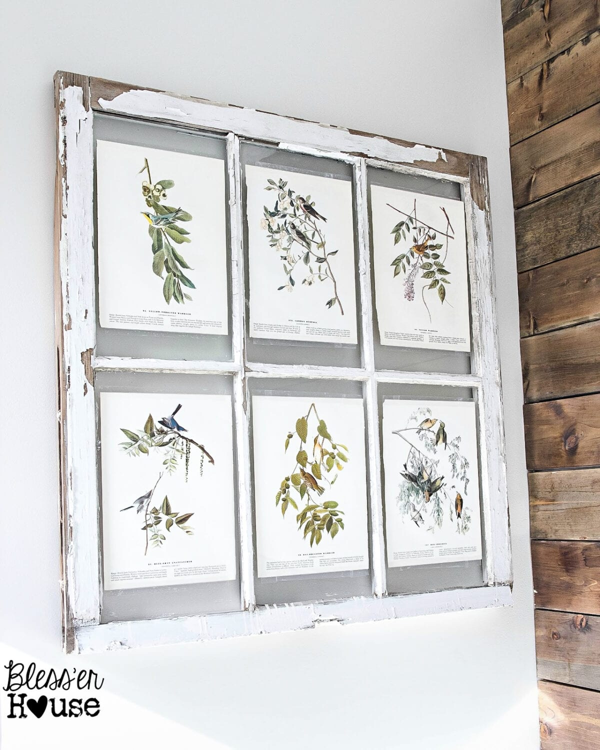 Easy Window Picture Frame and Free Botanical Printables | blesserhouse.com