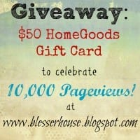 Giveaway: 10K Pageview Celebration!