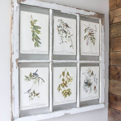 Spring Inspired Window Wall Decor