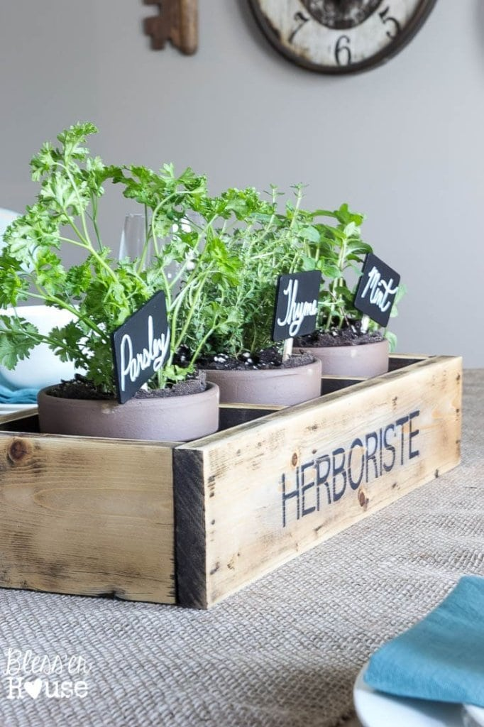7 Ingredients to Create a Cozy Space | www.blesserhouse.com | herb garden