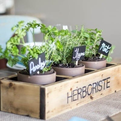 Repurposed Shelf Herb Garden Box {Summer Celebration}