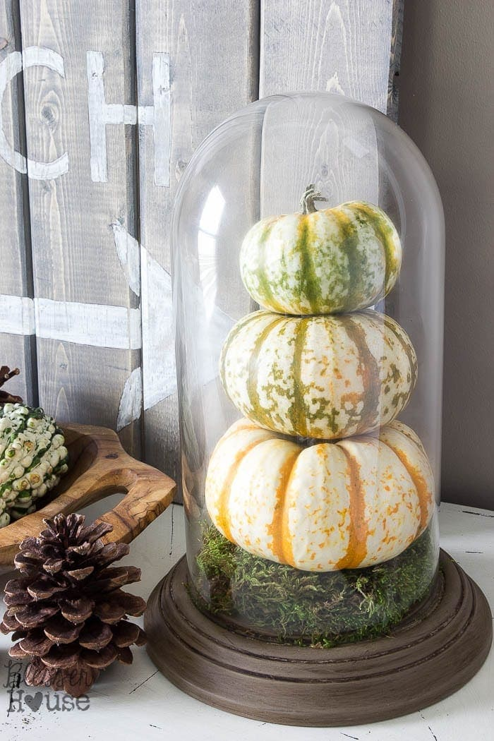 DIY Pumpkin Terrarium from a Dome Clock