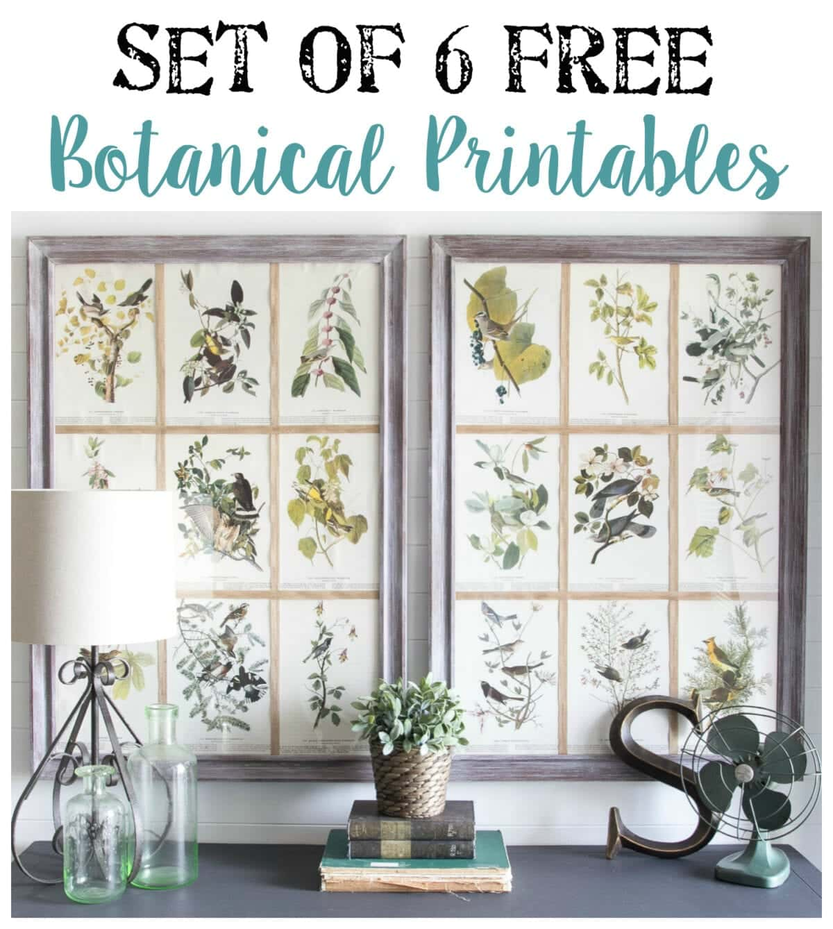 Bathroom wall art prints - Window Picture Frame And Free Botanical Printables Bless