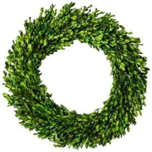 Large Boxwood Wreath