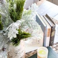 DIY Birch Bark Vase
