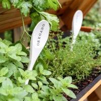 DIY Wooden Spoon Garden Markers