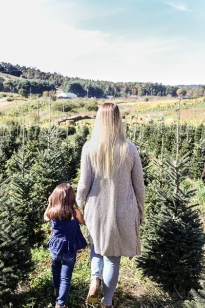 Why We Buy a Real Christmas Tree Every Year