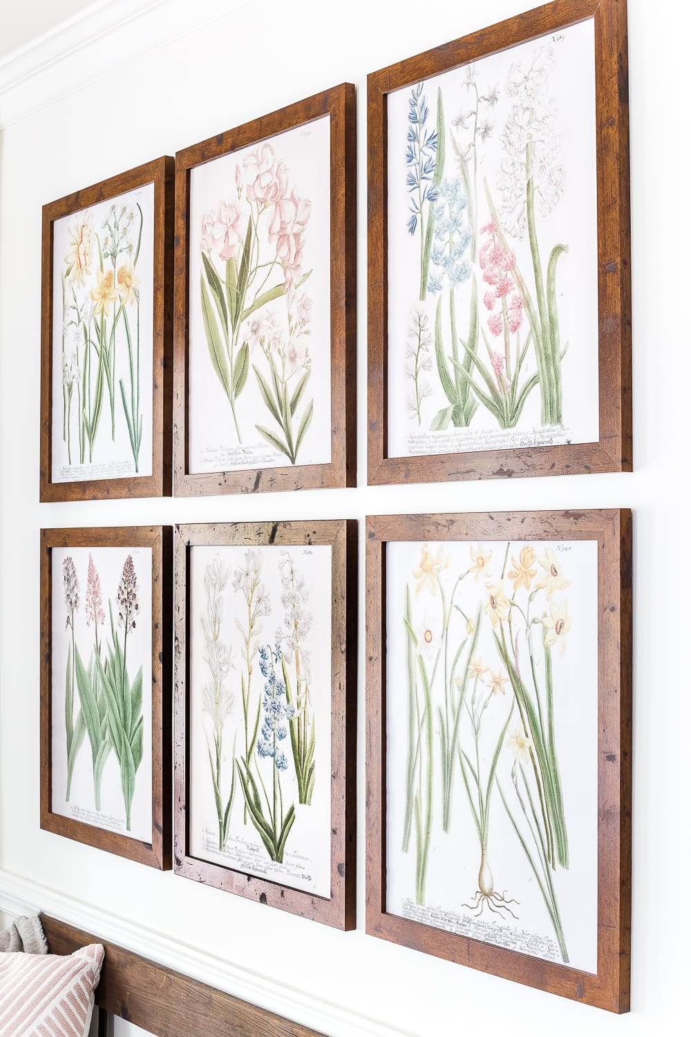 A free printable set of spring botanical art for $3 each on color engineer prints or free from your own printer to frame as wall decor. #gallerywall #springdecor #springprintable #freeprintable #freeart