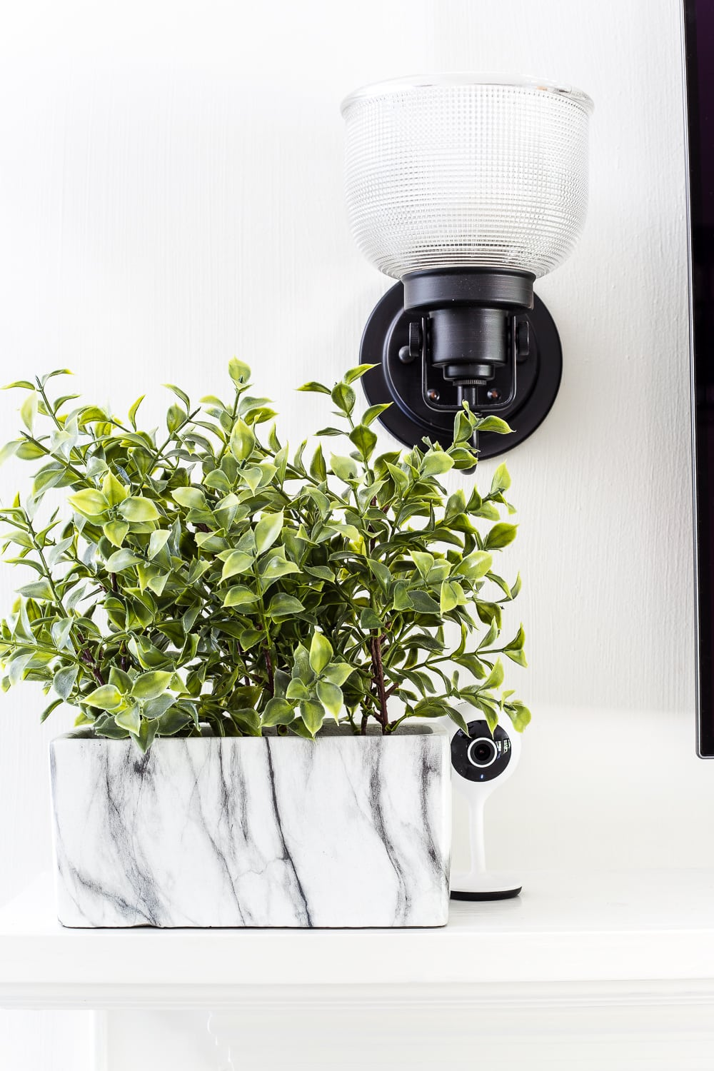 How to Disguise the Ugly Stuff in Your Home | Place small electronics, cameras, and routers beside or behind plants.