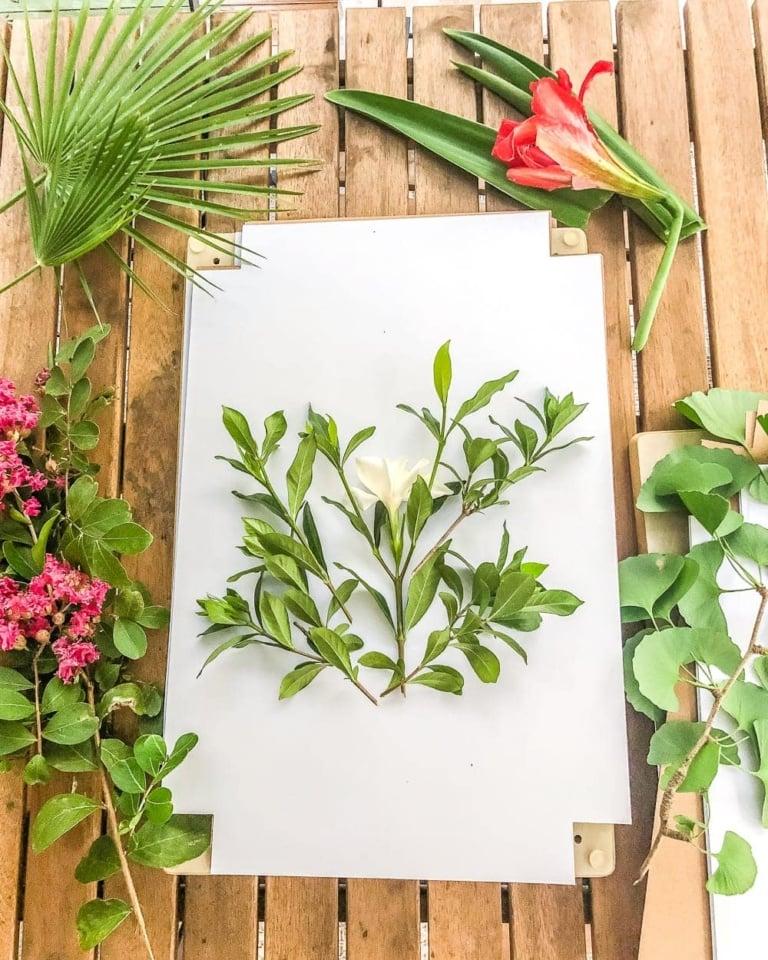 DIY Pressed Flower Art