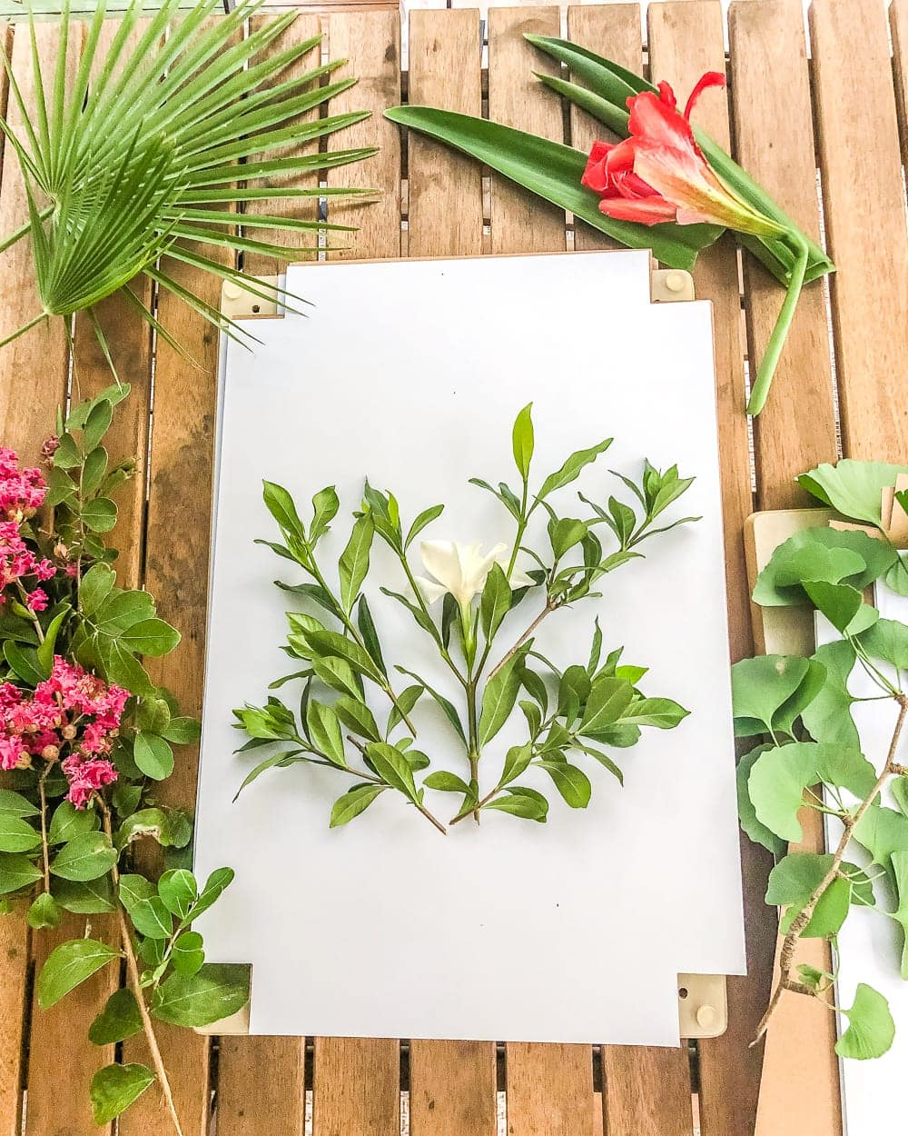 DIY Pressed Flower Art | How to press flowers and leaves from your own backyard to frame as inexpensive, vintage-inspired wall decor.
