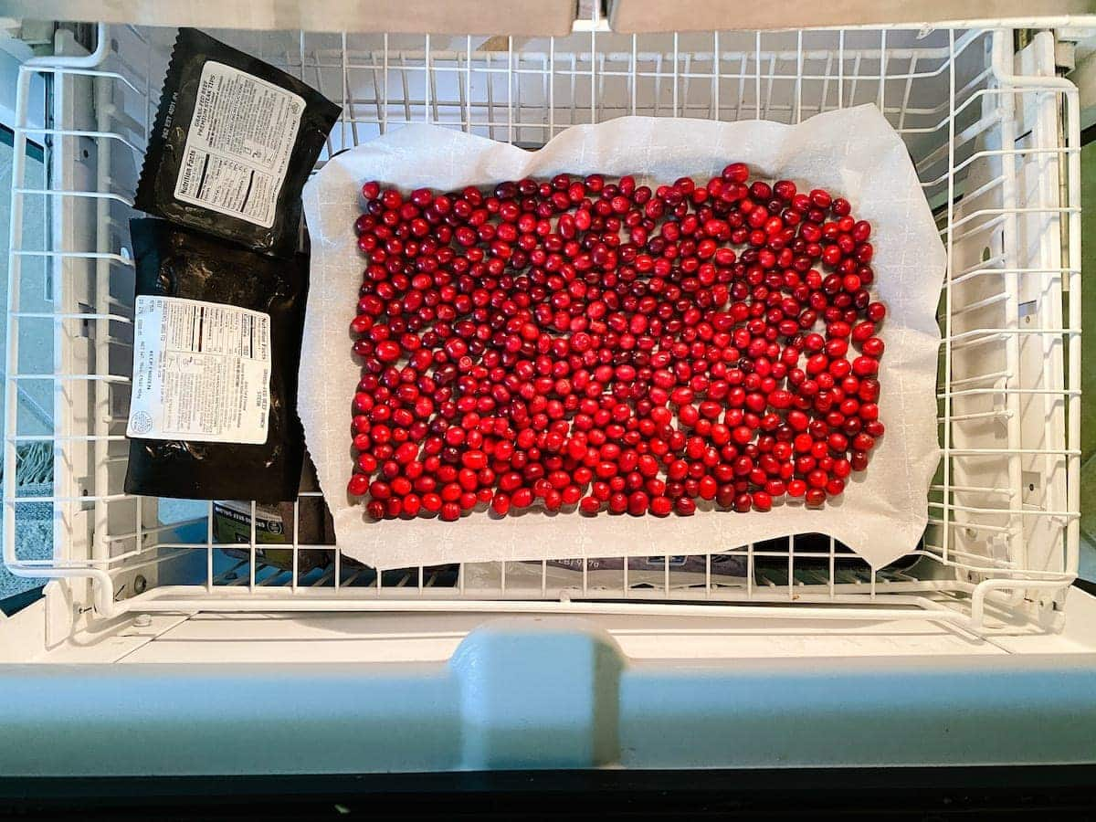 How to dry cranberries for Christmas decor