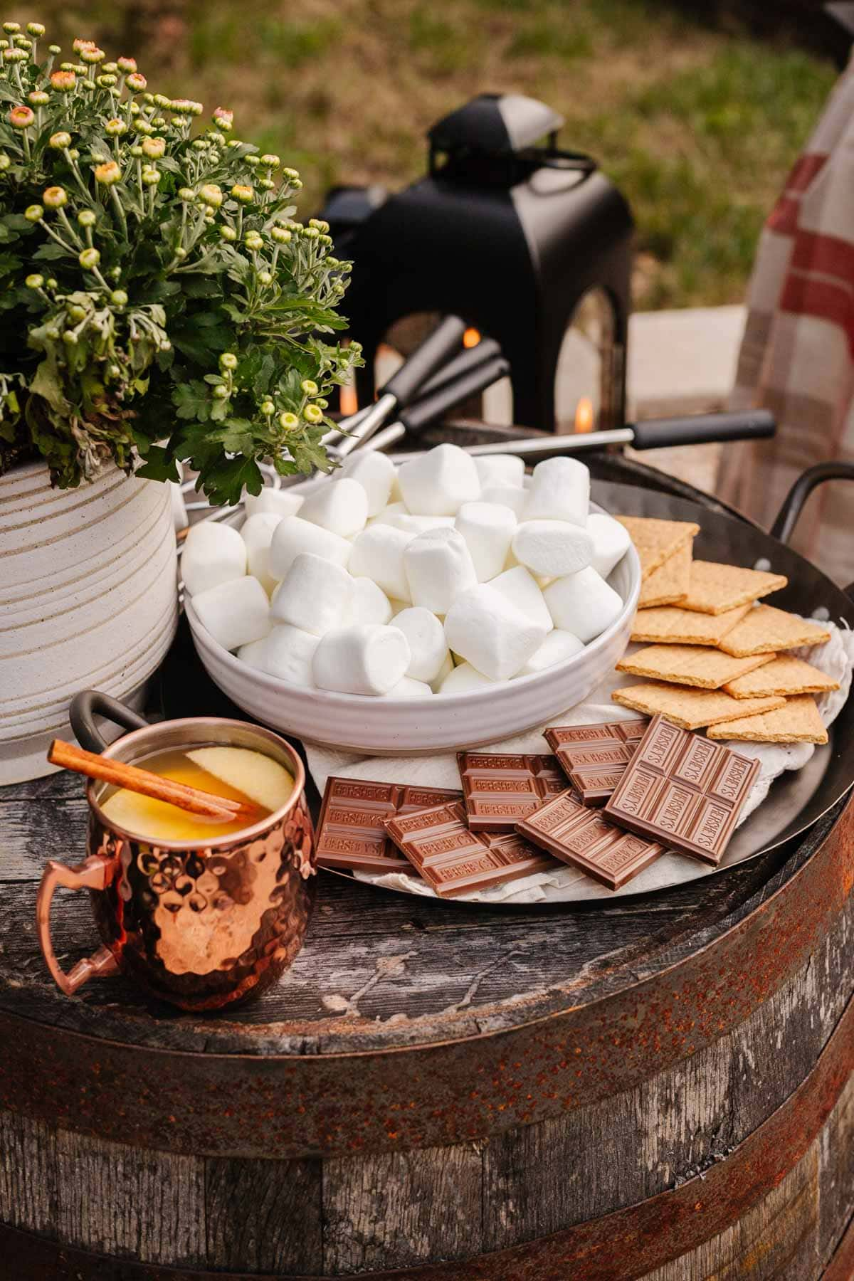 s'mores station at backyard party for fire pit idea